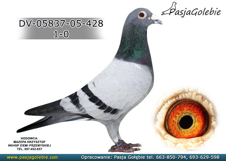 DV-05837-05-428