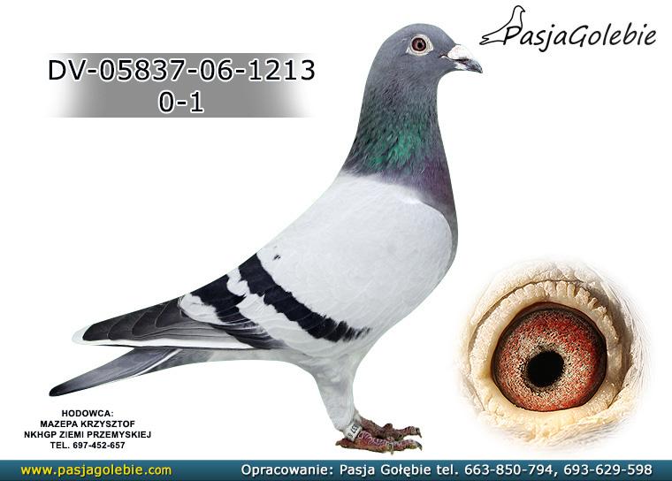 DV-05837-06-1213