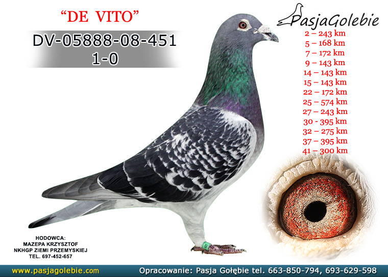 DV-05888-08-451
