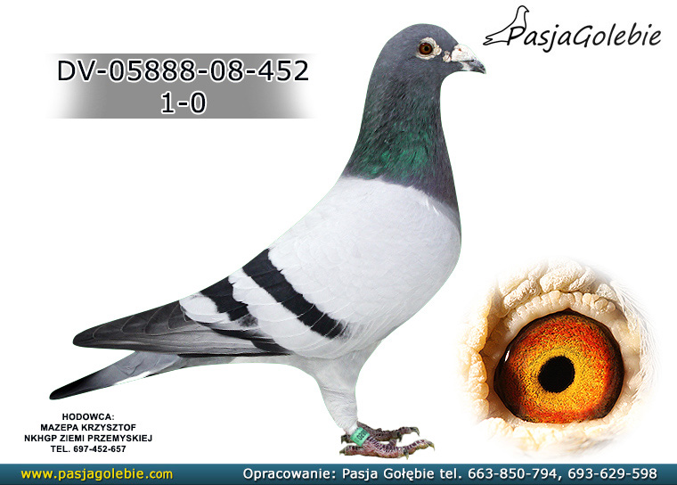 DV-05888-08-452
