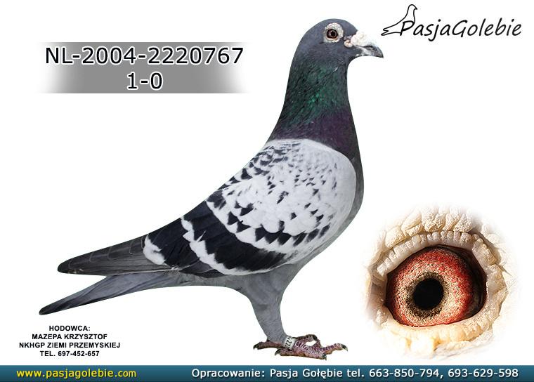 NL-2004-2220767