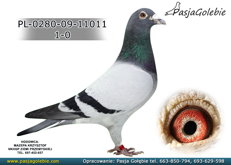 PL-0280-09-11011