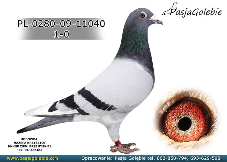 PL-0280-09-11040