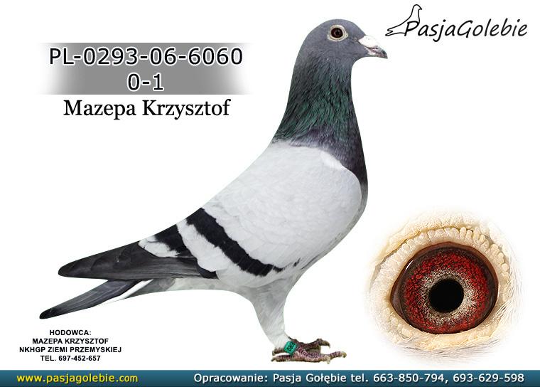 PL-0293-06-6060