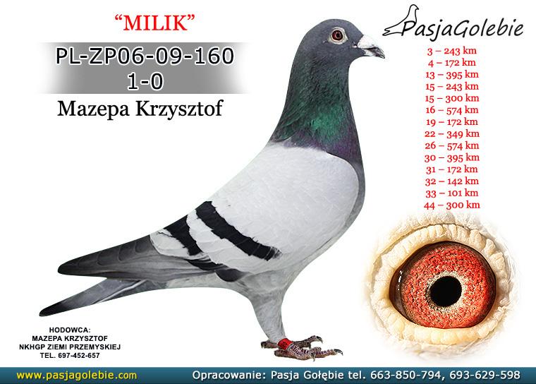 PL-ZP06-09-160