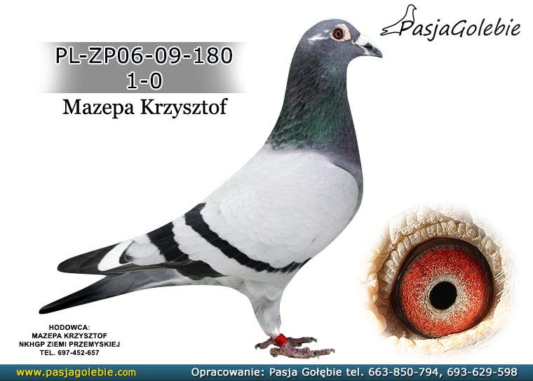 PL-ZP06-09-180