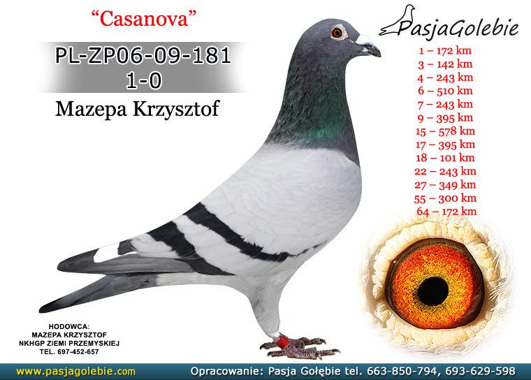 PL-ZP06-09-181