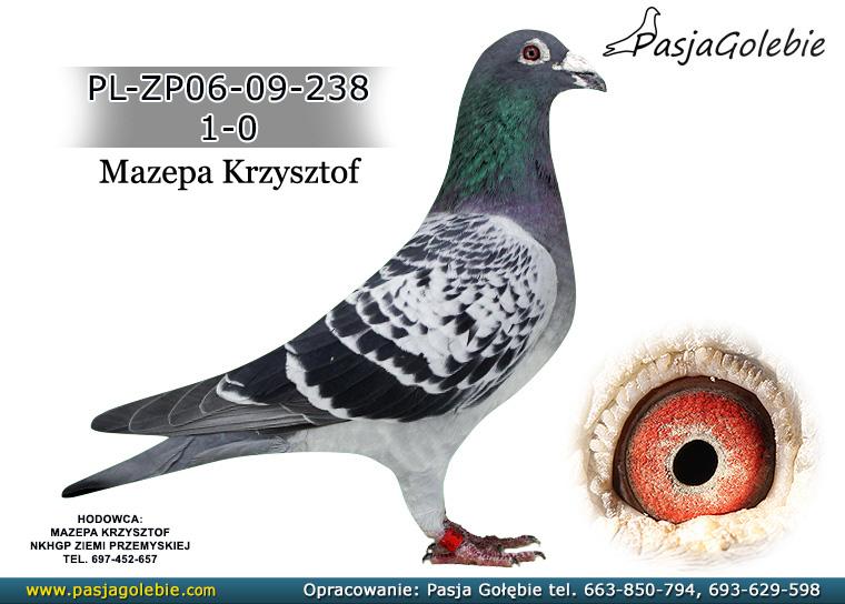 PL-ZP06-09-238