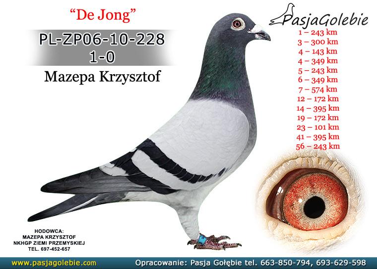PL-ZP06-10-228