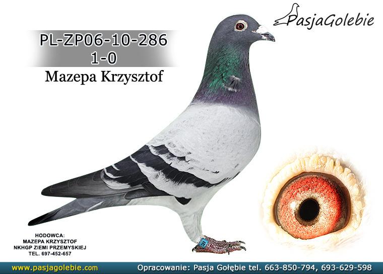PL-ZP06-10-286