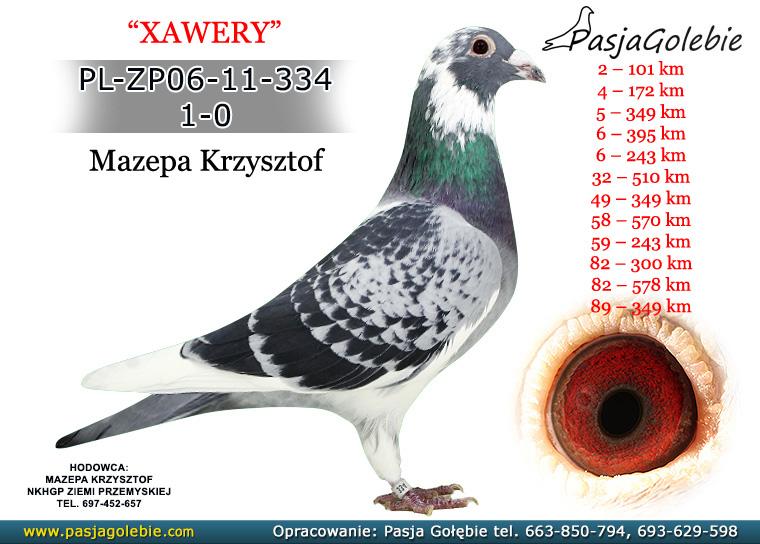 PL-ZP06-11-334
