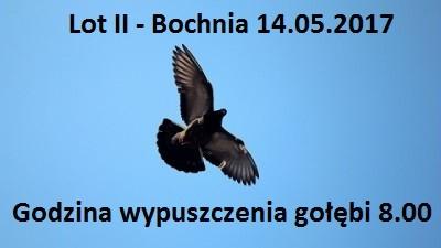 Lot II Bochnia Godzina wypuszczenia gołębi 8,00