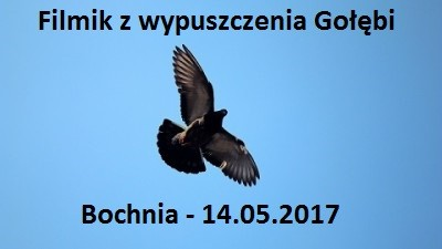 Filmik Bochnia 14.05.2017
