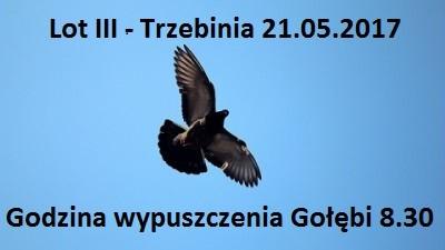 Lot III – Trzebinia 21.05.2017