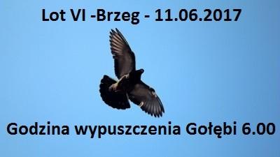 Lot VI Brzeg